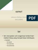 KKPMT