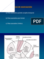 B-zuli Areas Asociacion