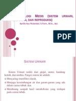 Terminologi Medis (Sistem Urinari, Endokrin, & Reproduksi)