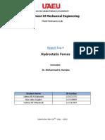 Report (Hydrostatic)