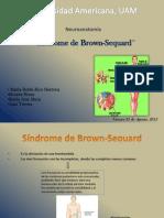 Sindrome de Brown-Sequard (1)