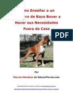 Como Enseñar a un Cachorro de Raza Boxer a Hacer sus Necesidades Fuera de Casa