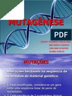 Trabalho de Toxicologia - Mutagênese