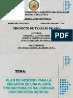 Proyecto Salchicha Soja