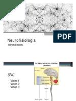 11 Neurofisiologia 1era Parte