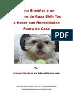 Como Enseñar a un Cachorro de Raza Shih Tzu a Hacer sus Necesidades Fuera de Casa