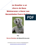Como Enseñar a un Cachorro de Raza Weimaraner a Hacer sus Necesidades Fuera de Casa