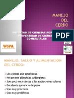 9. Manejo Del Cerdo