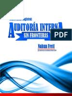Auditoria Interna Sin Fronteras