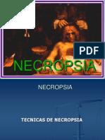 tecnicasdedisseccion-120918093604-phpapp01