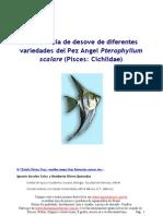 Frecuencia de Desove de Diferentes Especies de Pterpillum