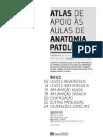 Atlas Da Pratica