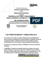 Jorge Lera - Plataforma Electoral 2013-Des de Pymes y Financ Del Desarrollo