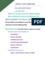 Regeneration and Repair