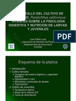 Cultivo_lenguado2