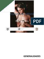 Anatomía de la Mama 2003