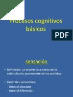 Procesos Cognitivos Psicologia General EXPOSICION FINAL