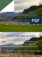 GHP GMP-2