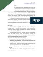 Review EDP Audit