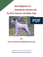 Como Mejorar El Comportamiento Canino de Tu Fox Terrier de Pelo Liso