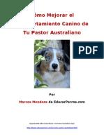 Como Mejorar El Comportamiento Canino de Tu Pastor Australiano