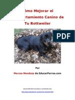 Como Mejorar El Comportamiento Canino de Tu Rottweiler