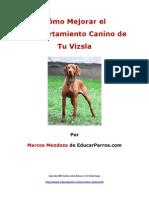 Como Mejorar El Comportamiento Canino de Tu Vizsla