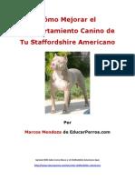 Como Mejorar el Comportamiento Canino de tu Staffordshire Americano