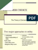 Consumer Choice (1)