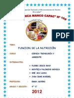 Monografia - Funcion de Nutricion Ok