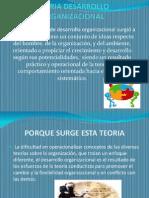 Diapositivas Teoria Desarrollo Organizacional