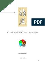 Curso Basico Del Shiatsu