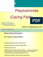 presentasi-platyhelminthes-nemathelminthes
