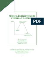 Manual de Practicas Cinetica y Catalisis