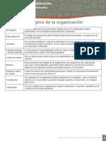 Principio de Organizacion