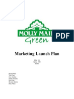 marketing plan cleaning service