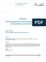 Life Cycle Management and SAP BusinessObjects Planning and Consolidation Version for NetWeaver