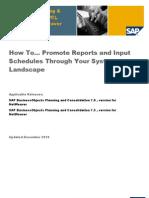 Report&INputschedule