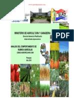 ANALISIS DEL COMPORTAMIENTO DE RUBROS AGRICOLAS - CENSO AGROPECUARIO 2008 - MAG - PARAGUAY - PORTALGUARANI