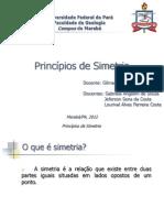 Princípios de Simetria seminario