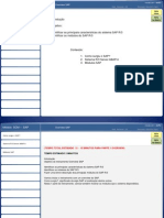 Apostilas Overview SAP -PPT