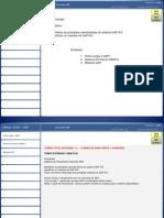 Apostilas Overview SAP -PPT
