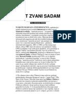 Aleksandar Hemoh Adut Zvani Sadam