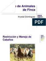 Profa. k. Dominguez Avet 110 13. Manejo de Animales de Finca