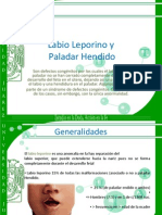 33105462 Labio Leporino y Paladar Hendido