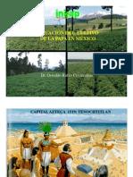 Situación del cultivo de papa en México (PowerPoint)