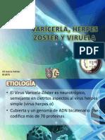 Varicela Hz y Viruela Terminado