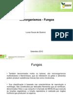 Microrganismos - ungos