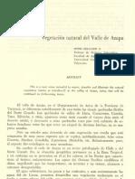 2 - Cap. 9 Vegetación natural del Valle de Azapa. Autor Otto Zol