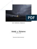 Sandy in Pictures